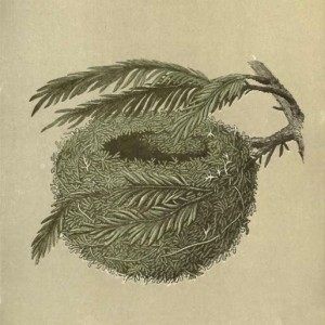 A_Natural_History_of_the_Nests_and_Eggs_of_British_Birds_-Goldcrest_-plate_132-cropped