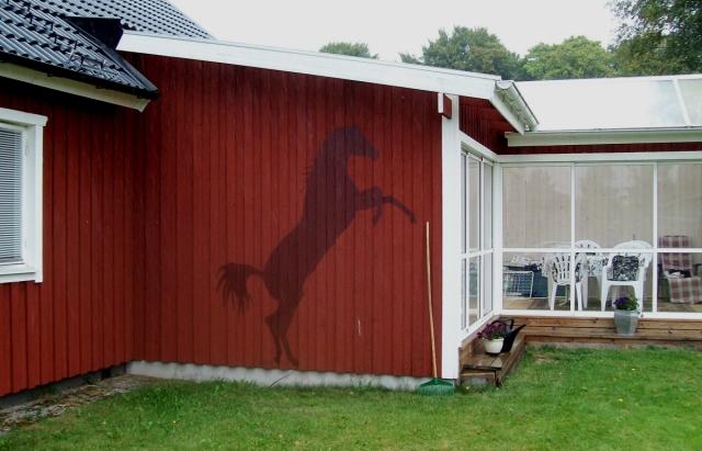 Hästens skugga