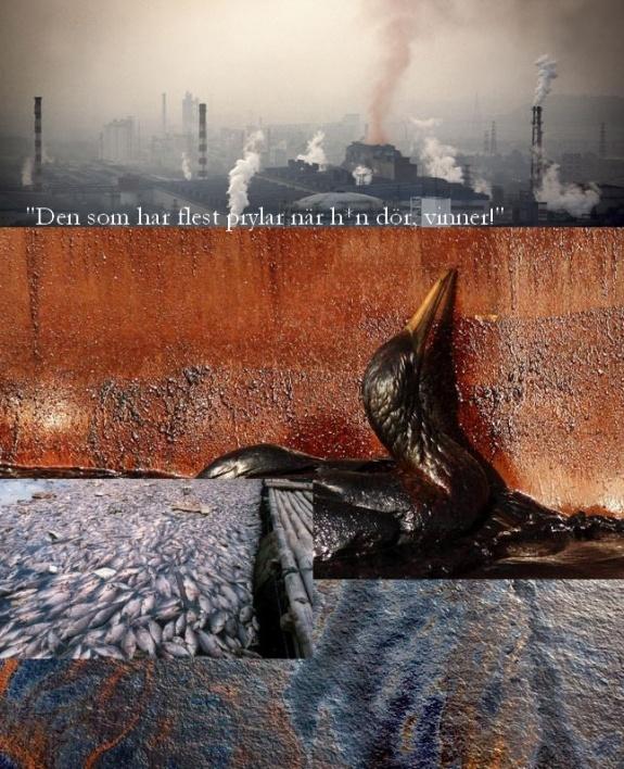 Kinas miljöproblem