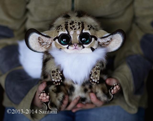 inari_foxes__oncilla_by_santani-d705mzg