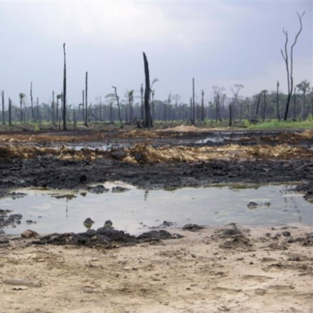 Shell oil spill at Rukpoku, showing no clean up or remediation after 3 months.