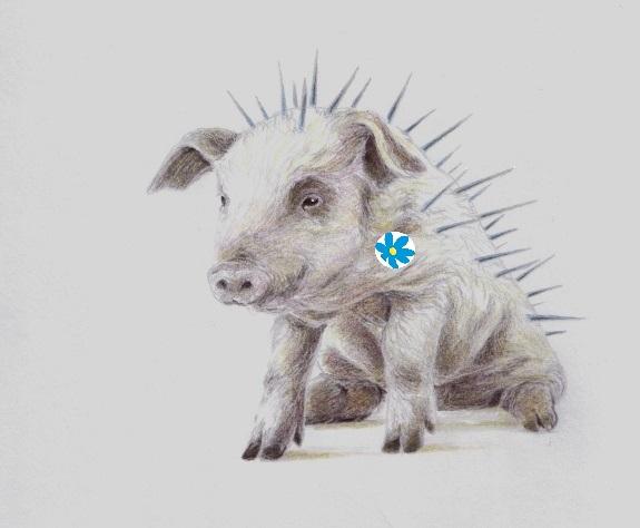 en taggig liten sverigedemokrat (2)