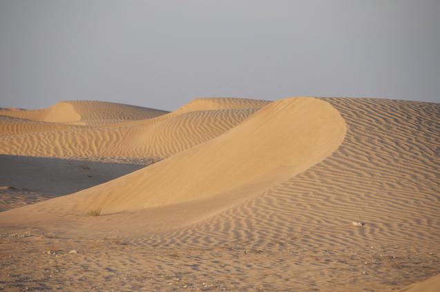 Oman_sand_DSC_0237_justerad_faerg_pt_8