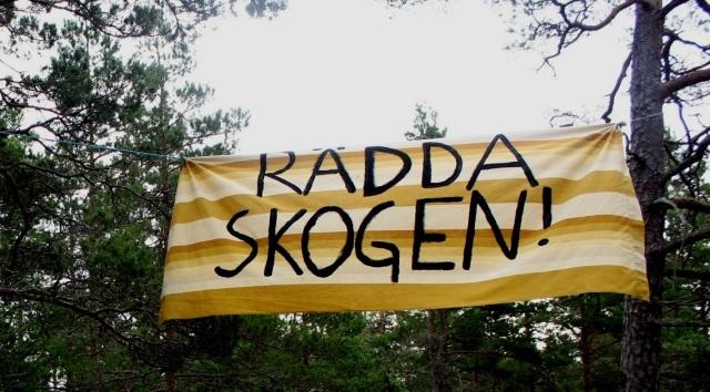 Sid18_21_Ojnareskogen4